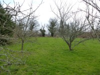 French property for sale in PARNAC, Indre - €139,520 - photo 3