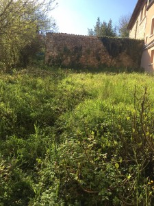 French property, houses and homes for sale in STE COLOMBE Landes Aquitaine
