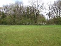 French property for sale in BRUX, Vienne - €41,000 - photo 6