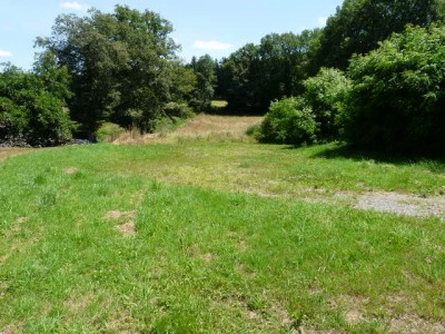 French property, houses and homes for sale in EXIDEUIL Charente Poitou_Charentes