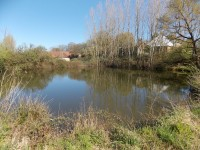 French property for sale in ST CYR LES CHAMPAGNES, Dordogne - €890,400 - photo 9