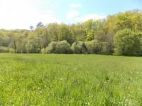 French property for sale in NANTHIAT, Dordogne - €11,000 - photo 4