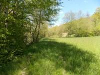 French property for sale in NANTHIAT, Dordogne - €11,000 - photo 8