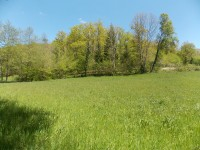 French property for sale in NANTHIAT, Dordogne - €11,000 - photo 6