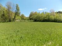 French property for sale in NANTHIAT, Dordogne - €11,000 - photo 9