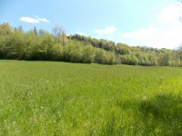 French property for sale in NANTHIAT, Dordogne - €11,000 - photo 5