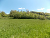 French property for sale in NANTHIAT, Dordogne - €11,000 - photo 10