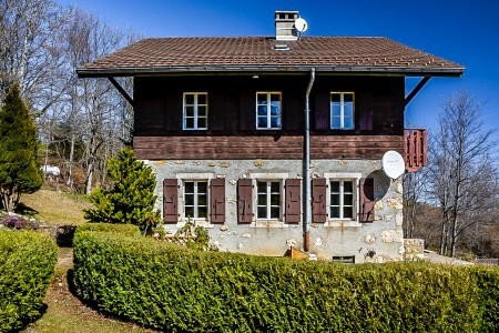 French property, houses and homes for sale in MONNETIER MORNEX Haute_Savoie French_Alps