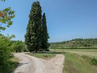 French property for sale in MONTAYRAL, Lot et Garonne - €402,800 - photo 3