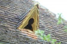 Maison à vendre à PRIGONRIEUX en Dordogne photo 6