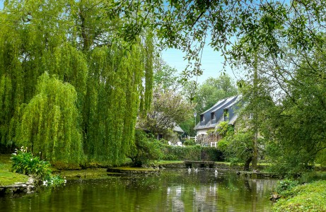 French property, houses and homes for sale in CAVIGNY Manche Normandy