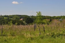 French property for sale in MILHAC DE NONTRON, Dordogne - €21,000 - photo 6