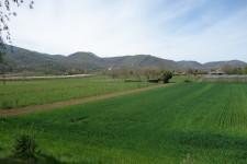 French property for sale in VALCABRERE, Haute Garonne - €307,000 - photo 9