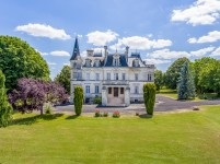 chateau for sale in AUBETERRE SUR DRONNECharente Poitou_Charentes