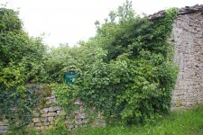French property for sale in LIMALONGES, Deux Sevres - €15,000 - photo 10