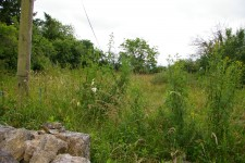 French property for sale in LIMALONGES, Deux Sevres - €15,000 - photo 9