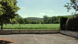 French property for sale in MONTIGNAC, Dordogne - €77,000 - photo 9