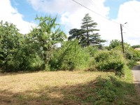 French property for sale in SAVIGNE, Vienne - €19,000 - photo 3