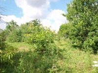 French property for sale in SAVIGNE, Vienne - €19,000 - photo 2