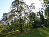 French property for sale in Proche Sainte Foy La Grande, Gironde photo 9