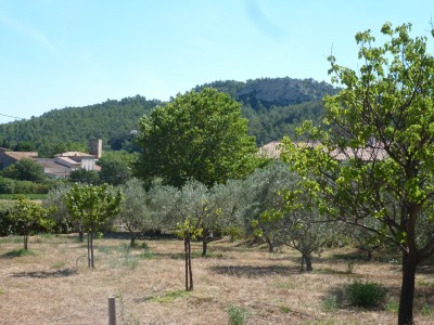 French property, houses and homes for sale in AGEL Herault Languedoc_Roussillon