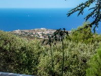 French property, houses and homes for sale in COLLIOURE Pyrenees_Orientales Languedoc_Roussillon