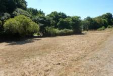 Land on small development