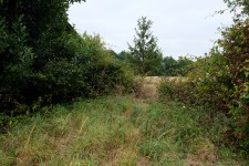 French property for sale in ALLOUE, Charente - €41,400 - photo 5