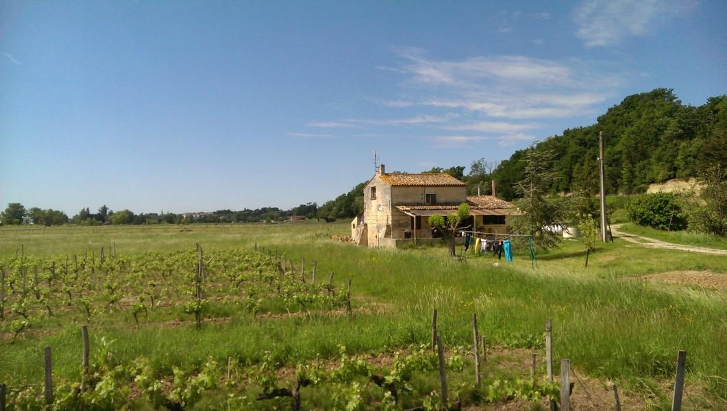 Maison à vendre à BOURG (33710) - Gironde