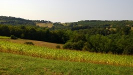 French property for sale in TEILLOTS, Dordogne - €344,500 - photo 5