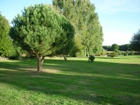 French property for sale in TREVRON, Cotes d Armor - €167,400 - photo 9
