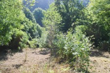 French property for sale in MERLEAC, Cotes d Armor - €23,000 - photo 10