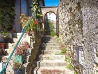 French property for sale in FENIOUX, Deux Sevres - €65,500 - photo 2