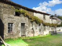 French property for sale in LA CHAPELLE THIREUIL, Deux Sevres - €33,000 - photo 2