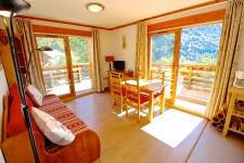 Appartement à vendre à VAUJANY Isere Rhone_Alpes
