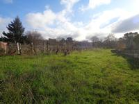 French property, houses and homes for sale inMONTAGNEGironde Aquitaine