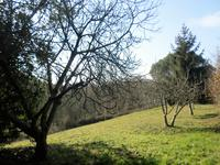 French property for sale in MORLANNE, Pyrenees Atlantiques - €230,000 - photo 10