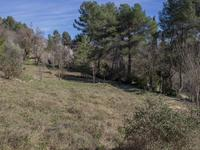 French property for sale in MONTAUROUX, Var - €199,500 - photo 3