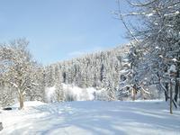 French ski chalets, properties in Meribel, Meribel, Three Valleys