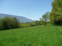French property, houses and homes for sale inCHAMBERYSavoie French_Alps