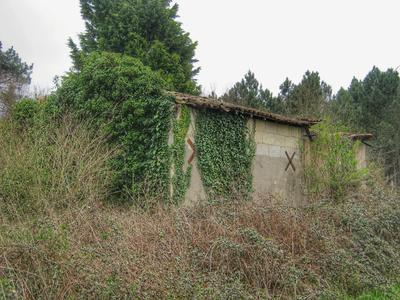 French property, houses and homes for sale in CHEPNIERS Charente_Maritime Poitou_Charentes