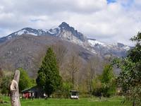 Terrain à vendre à CIERP GAUD en Haute Garonne - photo 1