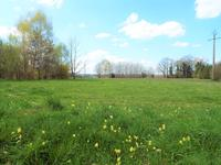 French property for sale in GORRE, Haute_Vienne photo 9