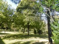 French property for sale in AZERAT, Dordogne photo 5