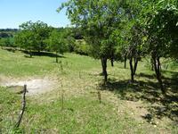 Terrain à vendre à MONTAGRIER en Dordogne - photo 6
