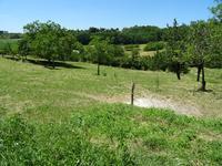Terrain à vendre à MONTAGRIER en Dordogne - photo 4