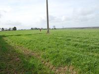 French property, houses and homes for sale inANDOUILLE NEUVILLEIlle_et_Vilaine Brittany