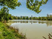 Etang de loisir privé de trois hectares, entouré de son terrain arboré de 8500m², avec petite cabane en bois.
