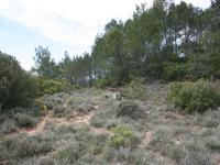 French property for sale in RIEUX EN VAL, Aude - €109,000 - photo 4