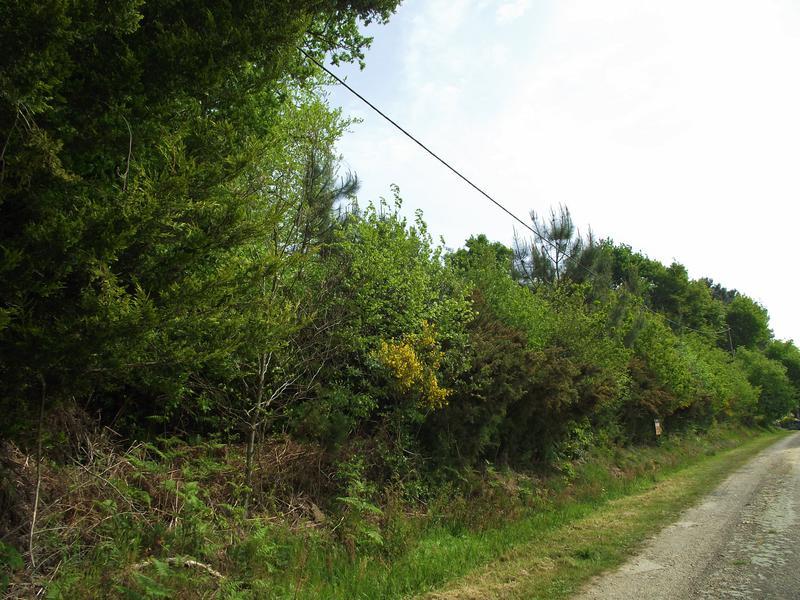 Terrain à vendre à ST MARTIN SUR OUST(56200) - Morbihan